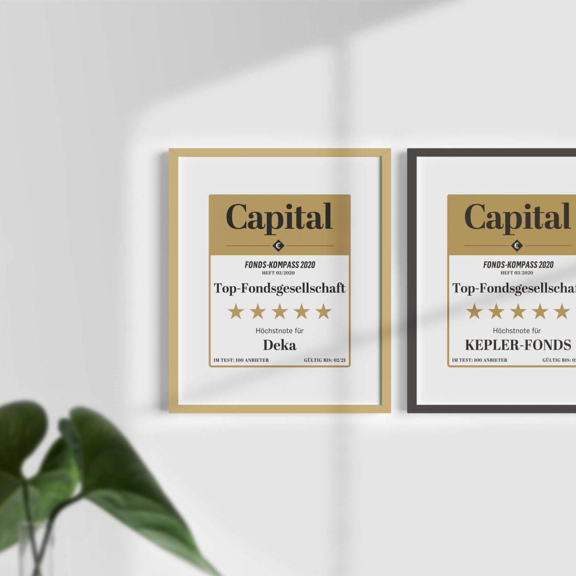 Capital® Siegel